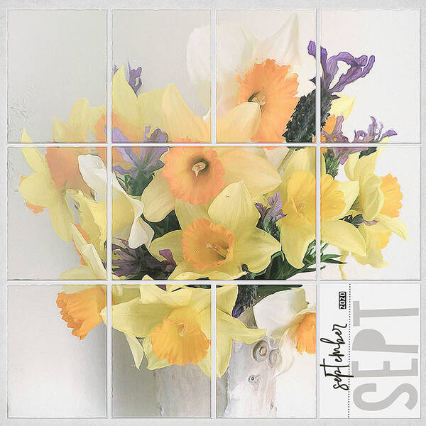 DAFFODILS - SEPTEMBER SPRING - PAGE 2