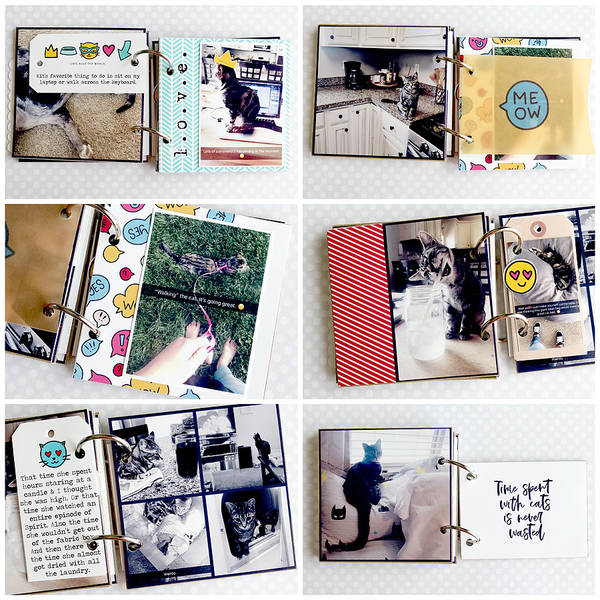 Cat Mini Album