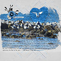 12X12-GULLS-AND-TERNS---MESSY.jpg
