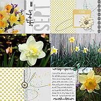 12x12-DAFFODILS---SEPT-2020-PAGE-1.jpg