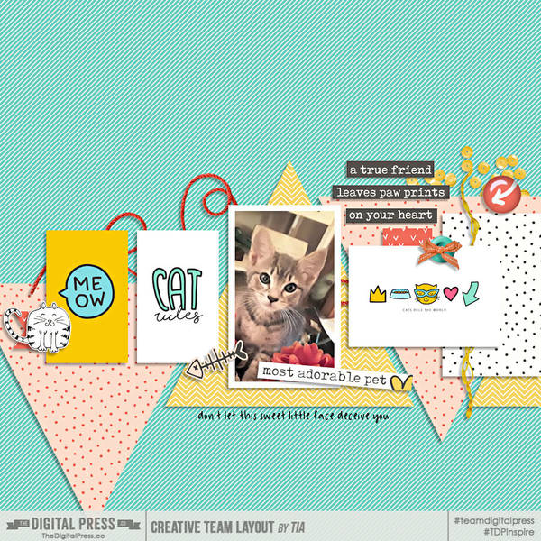 Meow_Cards_Banner