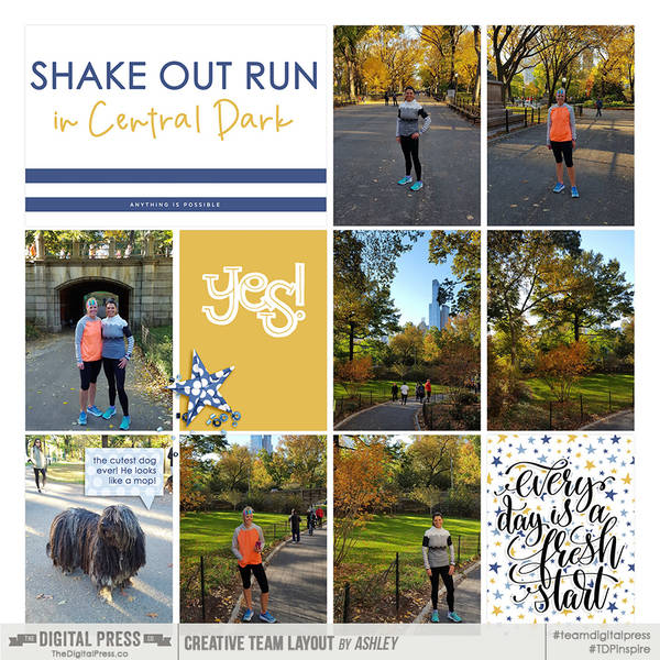 New York Marathon 2016, Shake Out Run in Central Park