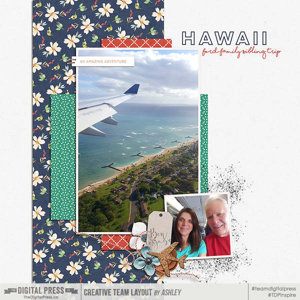 Hawaii - Ford Family sibling trip
