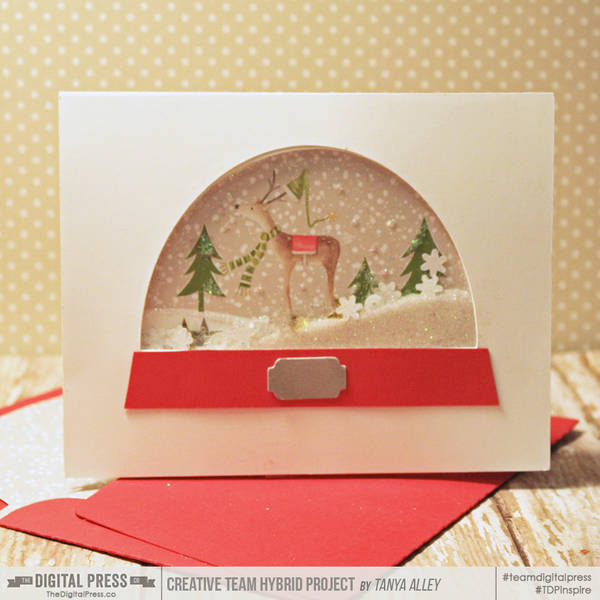 Snowglobe card with matching envie