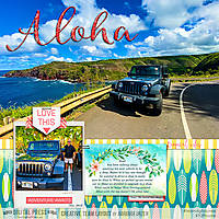 2019_1111-Aloha---Jeep-in-Maui-WEB-TDP.jpg
