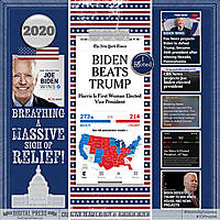 2020_1107-Election---Biden-Wins-WEB-TDP.jpg