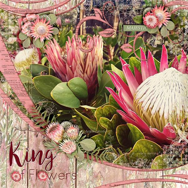 King of Flowers