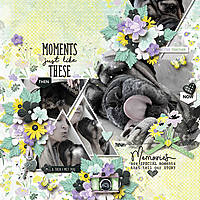 Moments-Like-These1.jpg