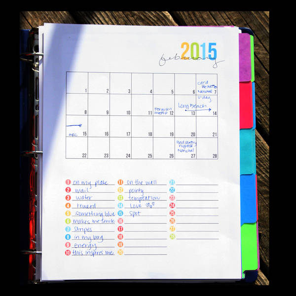 Photo-a-day/P365 Planner