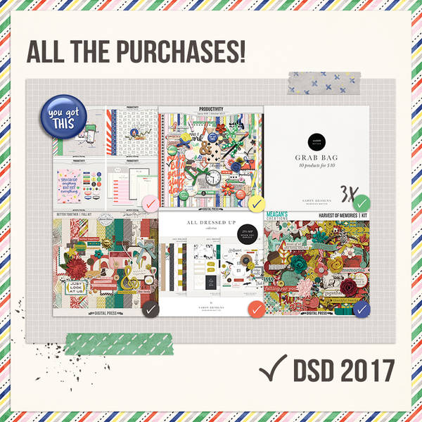 All the Purchases DSD 2017