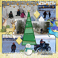 Winter-Moments-fw.jpg