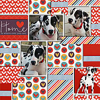 Home-is-whever-you-are-9x9.jpg