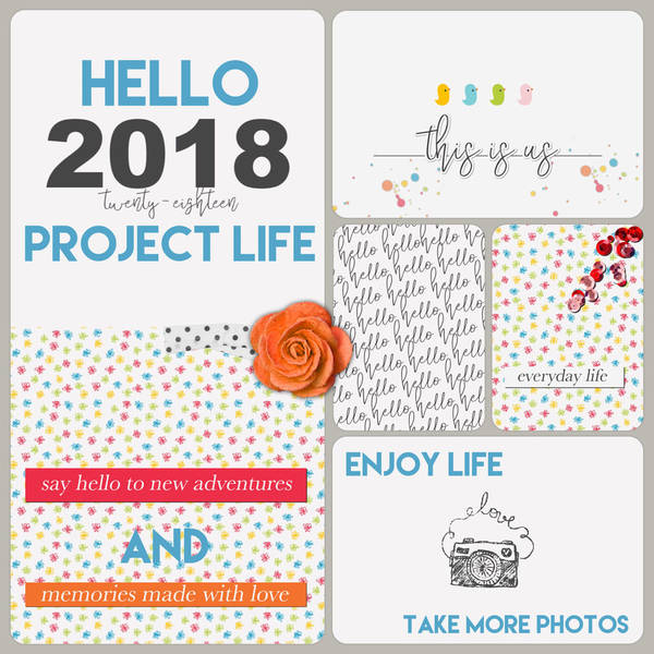 2018 Project Life Cover