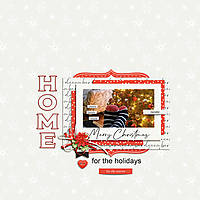 Home-for-the-Holidays1.jpg
